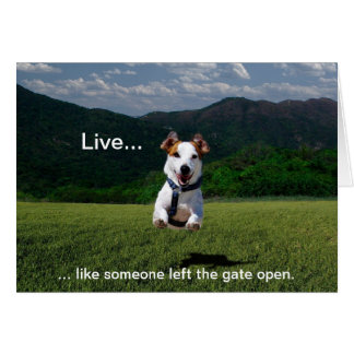 """Live Like Someone Left the Gate Open"" Note Cards"