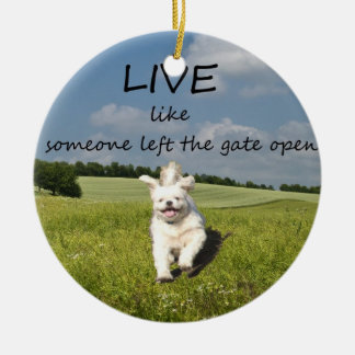 """Live Like Someone Left the Gate Open"" Ornament"