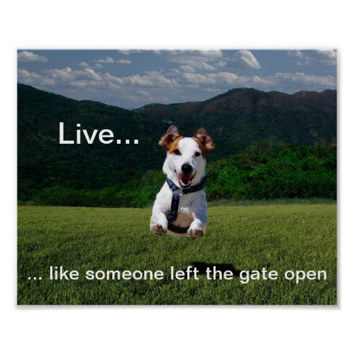"""""""Live Like Someone Left the Gate Open"""" Poster"""