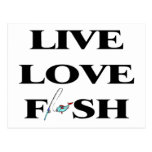 Live Love Fish Post Card