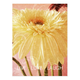 Live Love Laugh Gerbera Flower Light Grunge Postcard