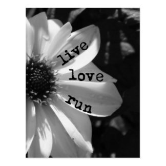 Live Love Run by Vetro Designs Postcard