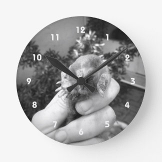 Live mole in hand smiling animal black white round clock