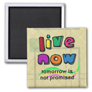 LIVE NOW 2 INCH SQUARE MAGNET