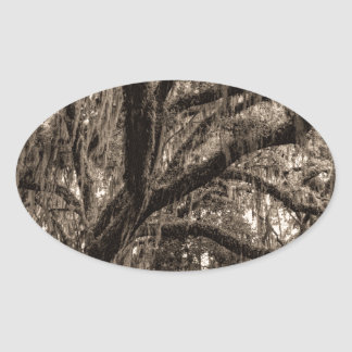Live Oak and Spanish Moss in Sepia Tones Oval Sticker