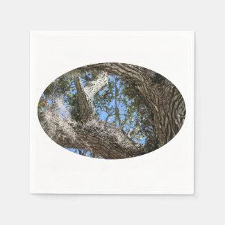 live oak  bark and sky view nature photograph paper napkin