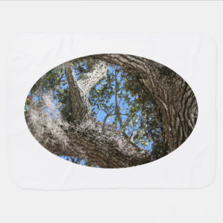 live oak  bark and sky view nature photograph stroller blanket