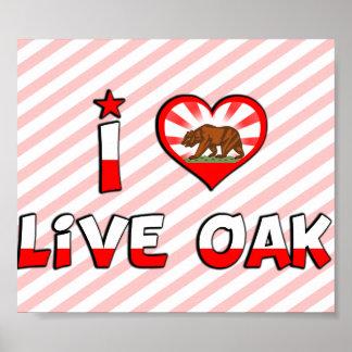 Live Oak, CA Posters