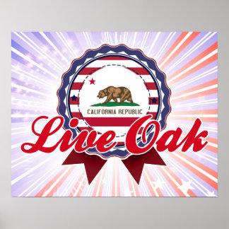 Live Oak, CA Poster