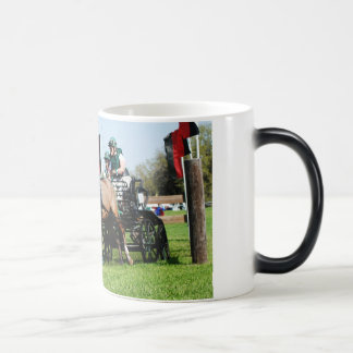 live oak cde magic mug