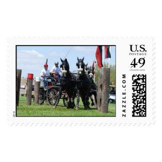 live oak cde stamps