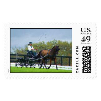 live oak cde postage stamp