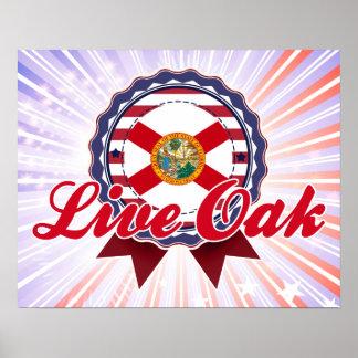 Live Oak, FL Print