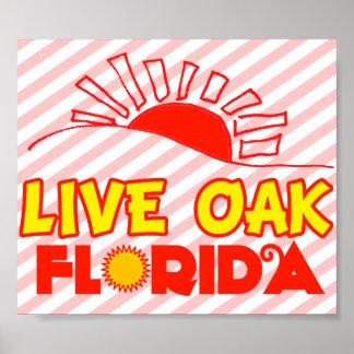 Live Oak, Florida Posters
