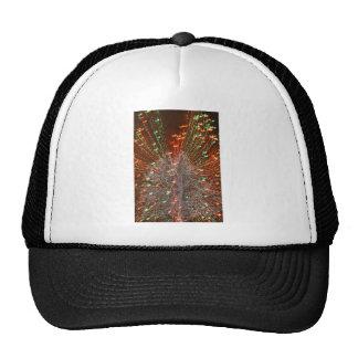 Live Oak Florida Tree Christmas Lights Zoom Trucker Hat