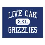 Live Oak Grizzlies Middle Tulare California Postcard