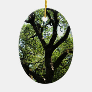 Live Oak In Downtown Savannah Ceramic Ornament