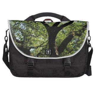 Live Oak In Downtown Savannah Laptop Bags
