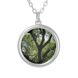 Live Oak In Downtown Savannah Silver Plated Necklace