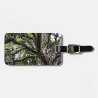 Live oak & mossLive Oak Trees - Quercus virginiana Bag Tag