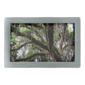 Live oak & mossLive Oak Trees - Quercus virginiana Belt Buckle