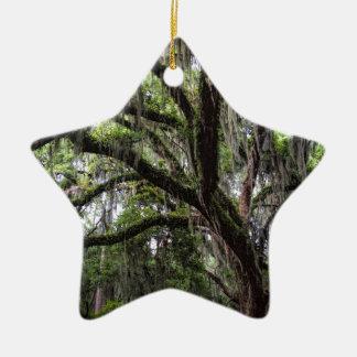 Live oak & mossLive Oak Trees - Quercus virginiana Ceramic Ornament