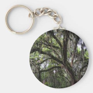 Live oak & mossLive Oak Trees - Quercus virginiana Keychain