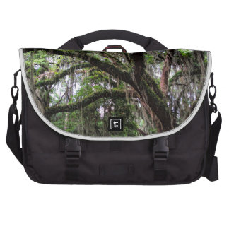 Live oak & mossLive Oak Trees - Quercus virginiana Laptop Commuter Bag