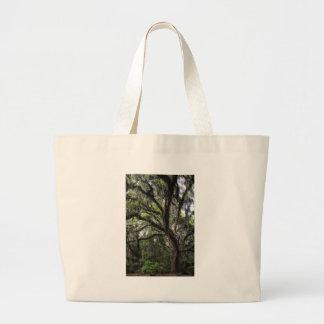 Live oak & mossLive Oak Trees - Quercus virginiana Large Tote Bag