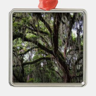 Live oak & mossLive Oak Trees - Quercus virginiana Metal Ornament