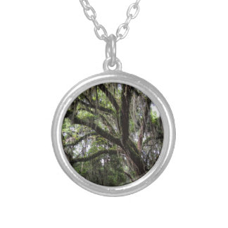 Live oak & mossLive Oak Trees - Quercus virginiana Silver Plated Necklace