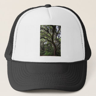 Live oak & mossLive Oak Trees - Quercus virginiana Trucker Hat