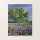 Live Oak & Texas Paintbrush, and Texas Jigsaw Puzzle