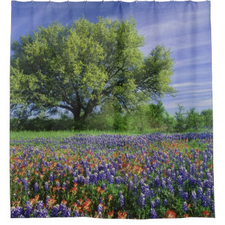 Live Oak & Texas Paintbrush, and Texas Shower Curtain