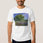 Live Oak & Texas Paintbrush, and Texas T Shirt