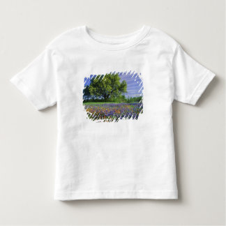 Live Oak & Texas Paintbrush, and Texas Toddler T-shirt