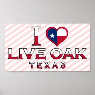 Live Oak, Texas Poster