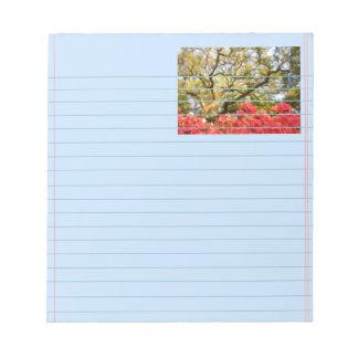 Live Oak Tree and Azaleas Notepad
