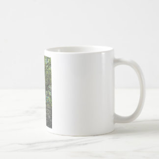 Live Oak Tree and Classic Bicycle Coffee Mug