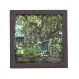 Live Oak Tree and Classic Bicycle Gift Box