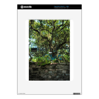 Live Oak Tree and Classic Bicycle iPad Decals