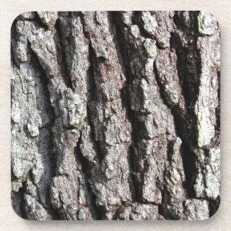 Live Oak Tree Bark photo Drink Coasters