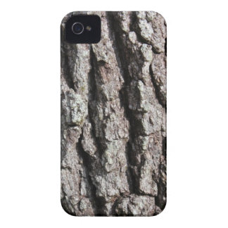 Live Oak Tree Bark photo iPhone 4 Case-Mate Case
