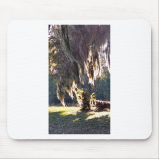 Live Oak Tree with draping Spanish Moss Mouse Pad