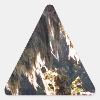 Live Oak Tree with draping Spanish Moss Triangle Sticker