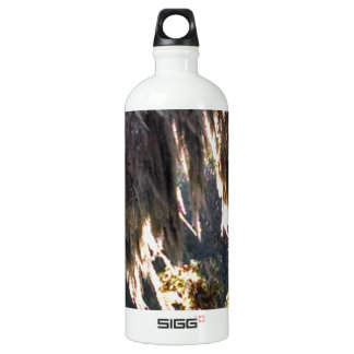 Live Oak Tree with draping Spanish Moss Water Bottle