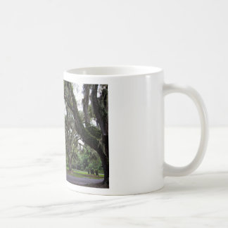 Live Oak Tree With Spanish Moss Coffee Mug