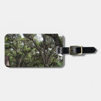 Live Oak Tree With Spanish Moss Luggage Tag