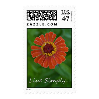 Live Simply Orange Zinnia Flower postage stamps