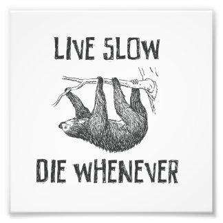 Live Slow Photograph